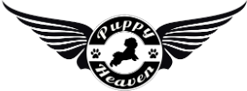 Puppy Heaven - Heavenly Puppies For Sale