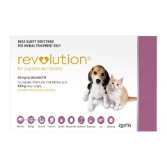 Revolution for Cats : Fleas and Heartworm Treatment