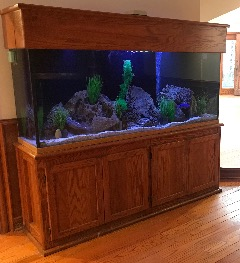 "180 Gallon Aquarium (72""x24""x25"")"