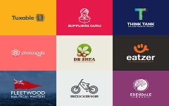 I am an experienced logo designer looking for work.