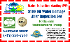 Master Service Pro Mold Removal Arlington Heights, Water Damage and Basement Cleanup Arlington Hts