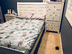 Beautiful Bedroom Collection (Coaster Brand)
