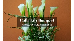 Grab the Hottest Deal on Calla Lily Wedding Bouquet