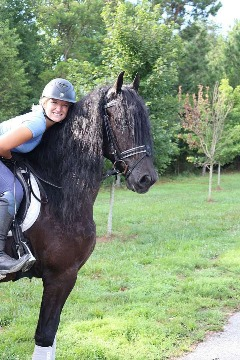 Beautiful, Sweet, Loving Easy to Ride 9-Year Old Gelding! Beautiful Hair