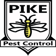 Bed Bug Treatments, Rodent Exclusions, One Shots roaches ants spiders