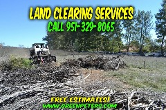 Affordable Brush Clearing Services Murrieta