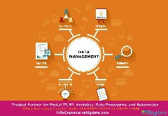 Outsource Data Management Services
