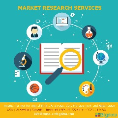 Outsource Market Research Services