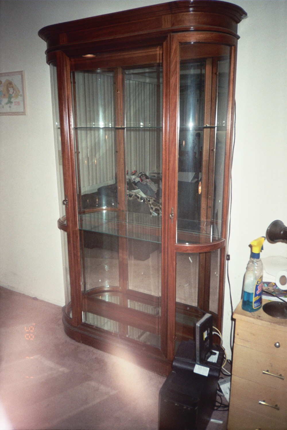 Large Doll Case/Curio Cabinet