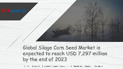 Global Silage Corn Seed Market is expected to reach USD 7,297 million by the end of 2023
