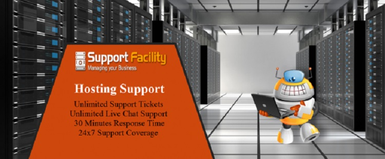 Cost Effective  Web Hosting Support  in USA