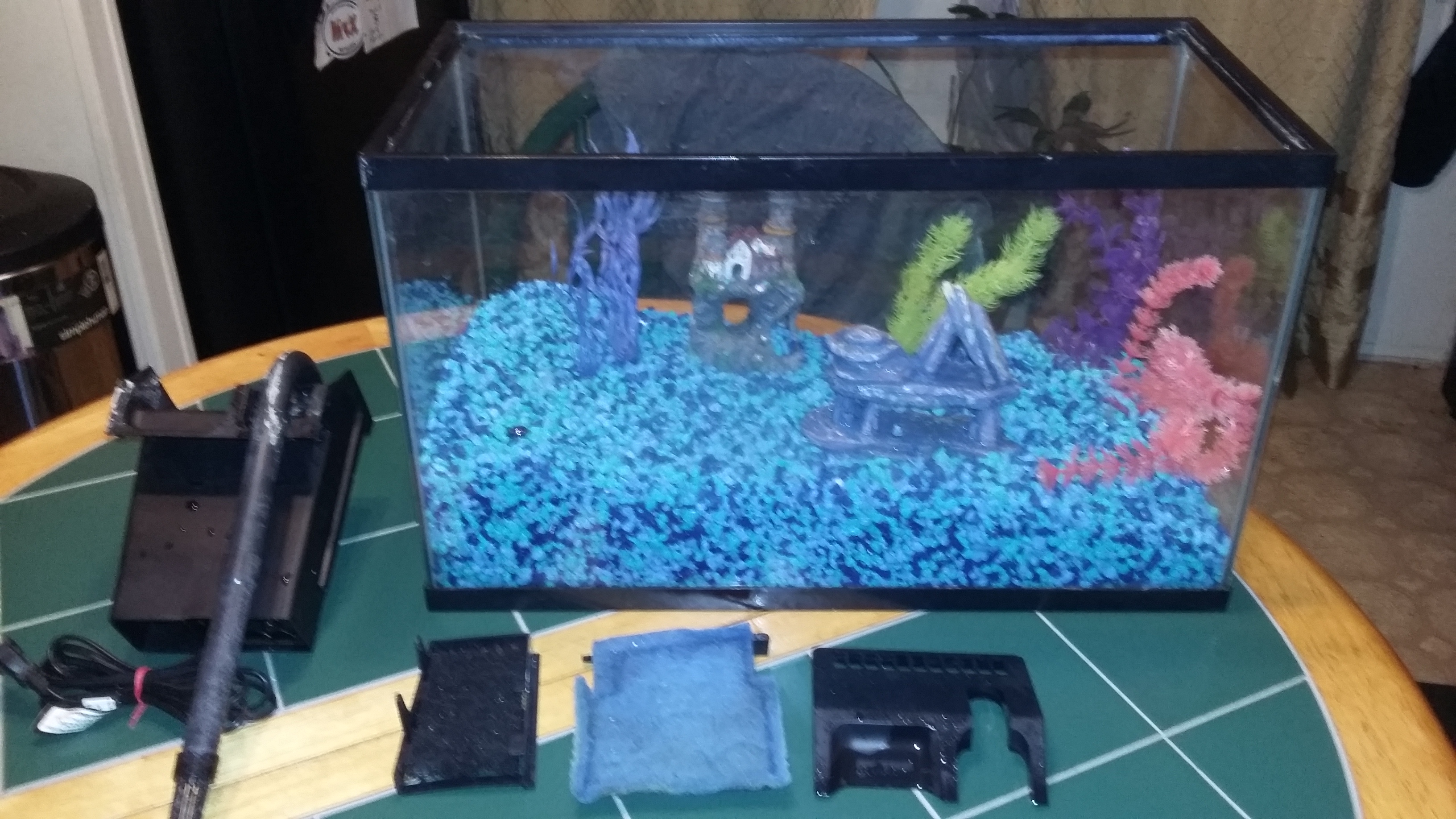 10 Gallon fish tank with 30.00 gravel glo plants filter extras
