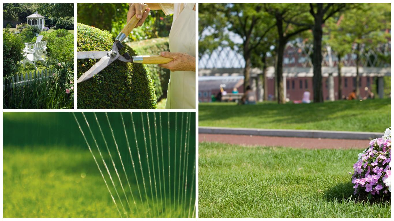 Merveilleux Mooreu0027s Lawn Care Services