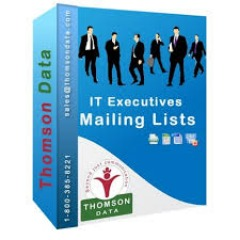 IT Executives Email List