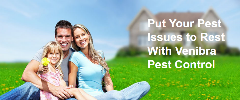 Rodent Control Weslaco | Venibra Pest Control