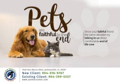 Find Emergency Animal Hospital Jacksonville FL- Dr. Venkat Gutta- Local Veterinarian