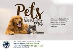 Find Emergency Animal Hospital Jacksonville FL- Dr. Venkat Gutta- Local Veterinarian