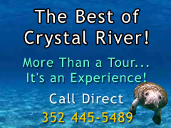 Kayak Rentals in Crystal River Florida