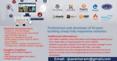 Professional Website Programmer - WEBSITE Design And DEVELOPMENT☆☆