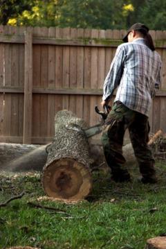 D's Tree Service