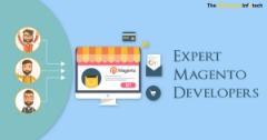 Expert Magento Developers