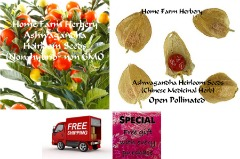 Ashwagandha Heirloom Seeds, Order now, FREE shipping & a free gift included!