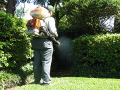 Mosquito Spray | Tick Spray | Mosquito Control Company | Tick Control Services