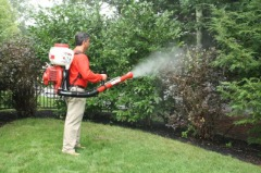 Mosquito Pest Control | Mosquito Spray Yard | Mosquito Control Company | Tick Control Services
