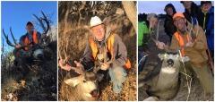 Deer Points