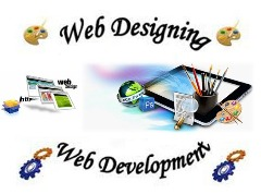 Web Design and Development Agency In New York