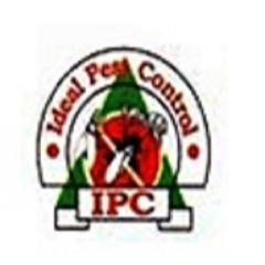 Ant Pest Control Services Pune, Best Pest Control Services in Balewadi Pune, Pest Control In Wakad