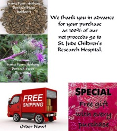 Burdock Heirloom Herb Seeds, Order now FREE shipping & a free gift included.
