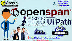 OpenSpan Training in Chennai