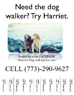 Need a dog walker? Try Harriet