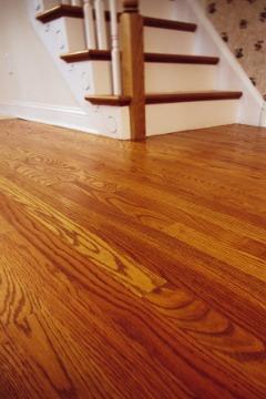 Floors Universe