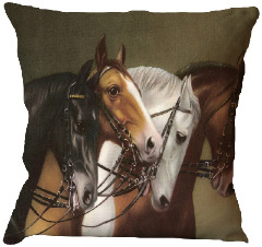Indian Pillow Covers Online at a Reasonable Price