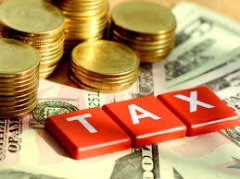 Personal and Business Taxes