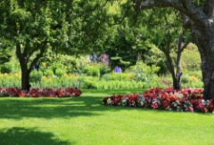 Town and Country Lawn Care Services