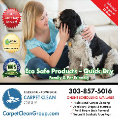 Denver's Premier Carpet Cleaning Service - 5-star Service Guaranteed - Call or Book Online