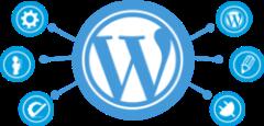WordPress Classes Florida | WordPress training Orlando | Web Guru
