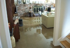 Water Damage Removal Services in Bradenton | ServiceMaster Restorations