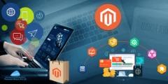 Hire Magento Developer Store Development