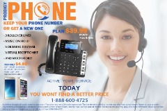 Telephony for small businesses or businesses (Houston)
