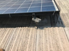 Solar panel cleaning and pest protection