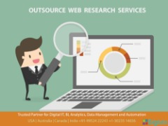 Internet Research Services