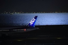 ANA Airlines booking Phone Number | 18772942845 | Online Reservation Number