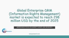 Global Enterprise-DRM (Information Rights Management) market research