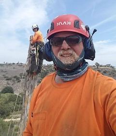 Sean McNeil Tree Service
