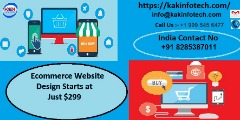 Best ecommerce website Design Starts at $299