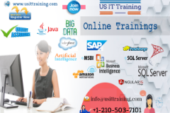 US IT Training | IT Courses Online Training With Placements